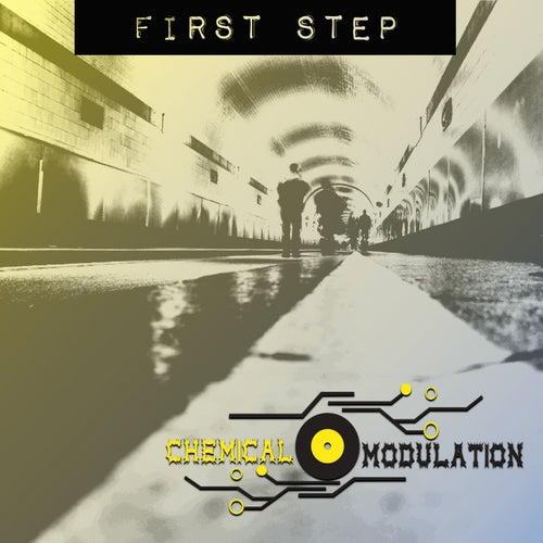 First Step von Chemical Modulation
