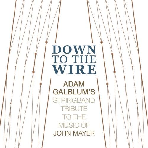 Down to the Wire: Stringband Tribute to the Music of John Mayer de Adam Galblum