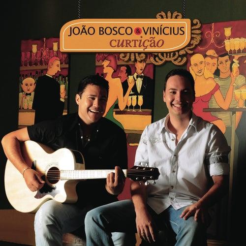 João Bosco & Vinicius 2009 de João Bosco & Vinícius