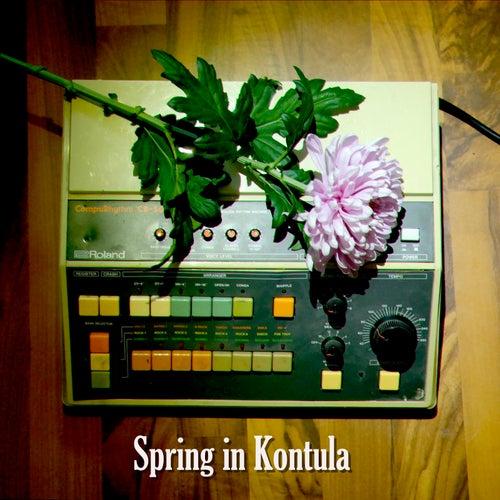 Spring in Kontula by Jimi Tenor