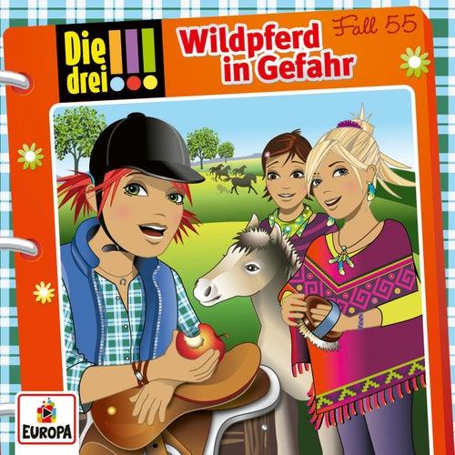 055/Wildpferd in Gefahr von Die Drei !!!