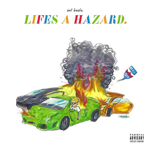 Life's a Hazard by Ant Beale
