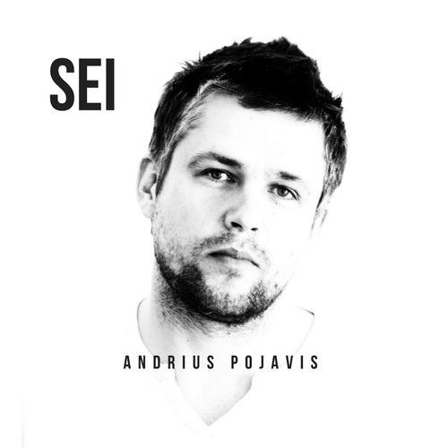 Sei by Andrius Pojavis