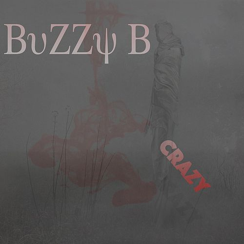 Crazy by Buzzy B
