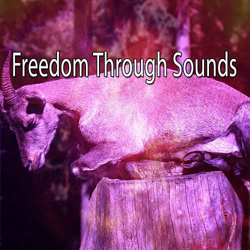 Freedom Through Sounds de Water Sound Natural White Noise