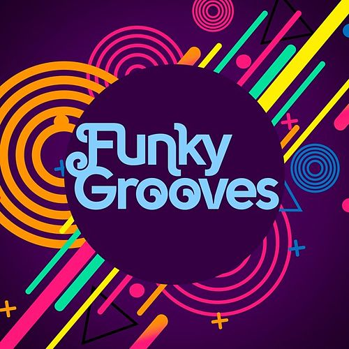 Funky Grooves by Various Artists