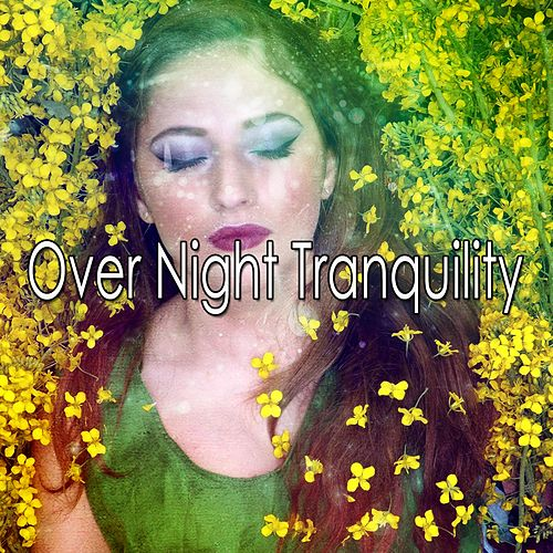 Over Night Tranquility by White Noise Baby Sleep (1)
