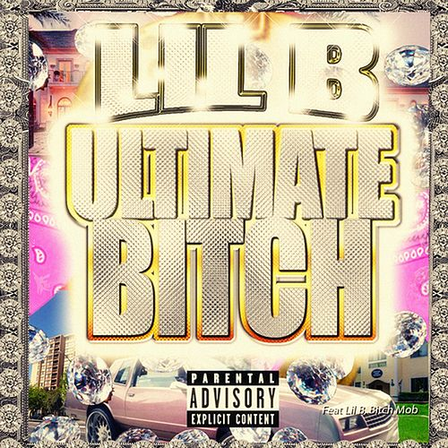 Ultimate Bitch by Lil'B