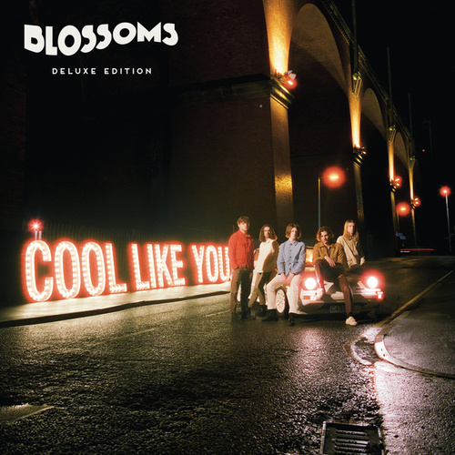 Cool Like You (Deluxe) von Blossoms