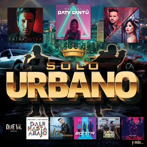 Solo Urbano de Various Artists