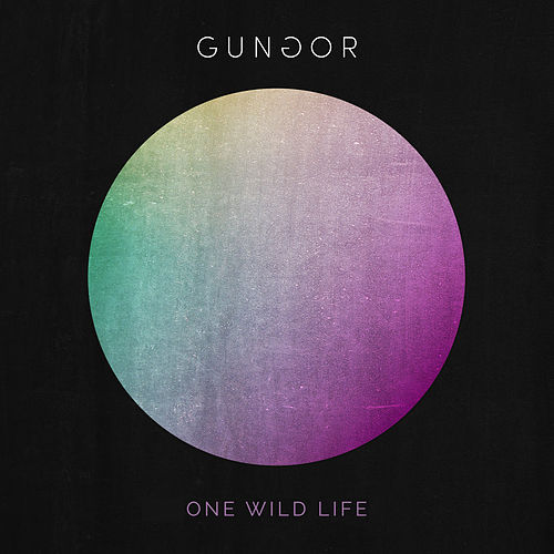One Wild Life de Gungor