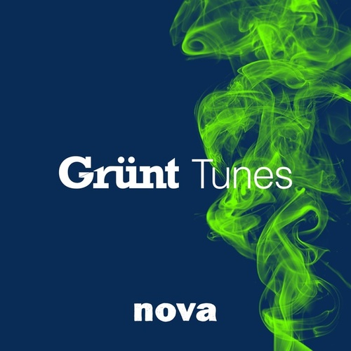 Nova Grünt Tunes de Various Artists