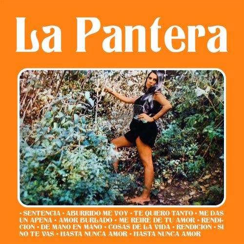 Sentencia by PANTERA