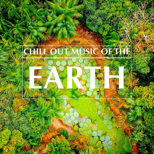 Chill Out Music of the Earth de Various Artists
