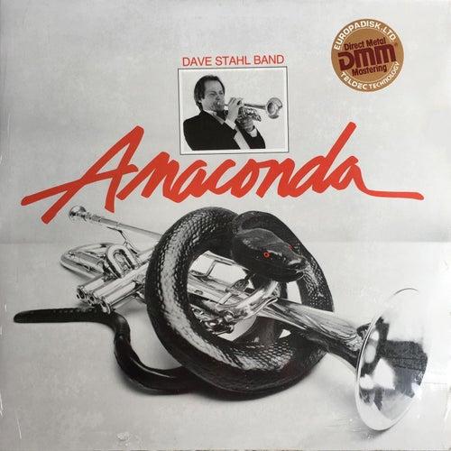 Anaconda by Dave Stahl Band