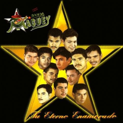 Tú Eterno Enamorado de Banda Maguey
