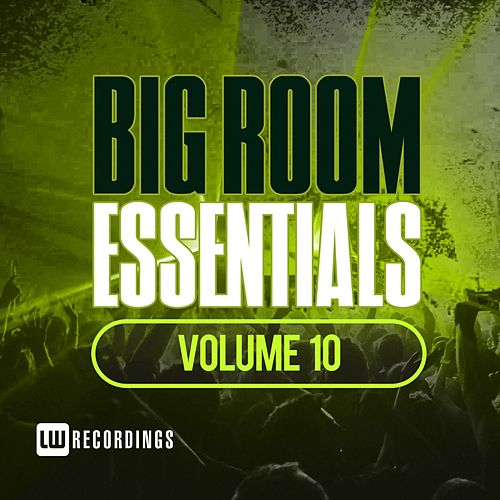 Big Room Essentials, Vol. 10 - EP van Various Artists