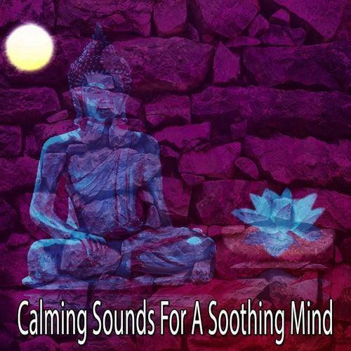 Calming Sounds For A Soothing Mind de Meditación Música Ambiente
