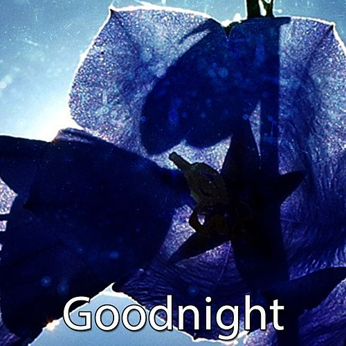 Goodnight de Sleepicious