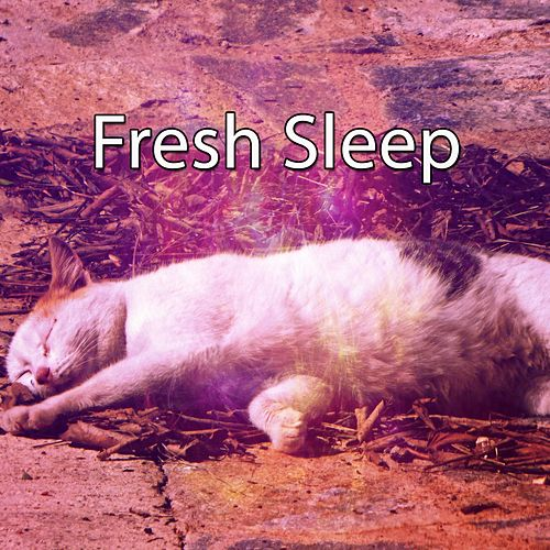 Fresh Sleep by White Noise Baby Sleep (1)