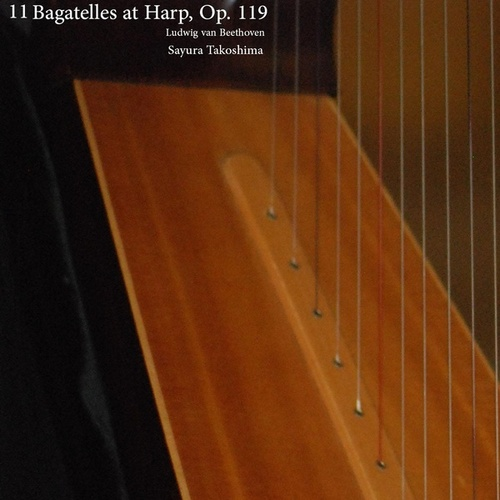 11 Bagatelles at Harp, Op. 119 de Various Artists