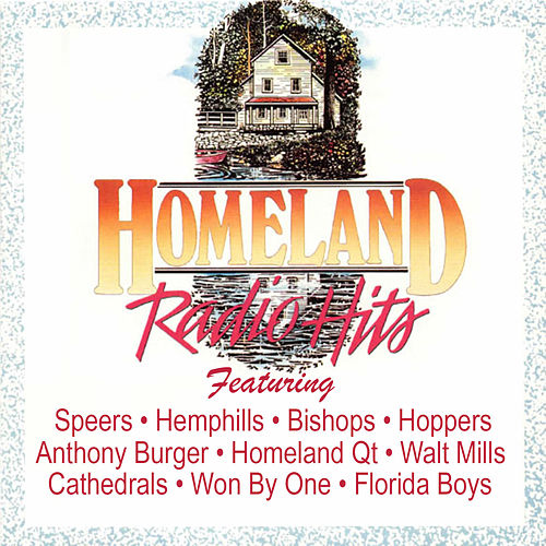 Homeland Radio Hits Vol 8 by Various Artists