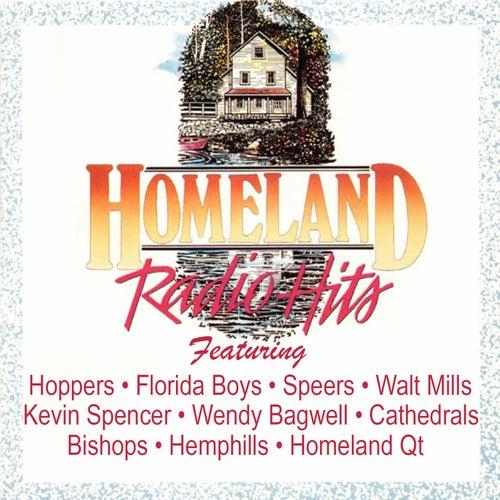 Homeland Radio Hits Vol 9 by Various Artists