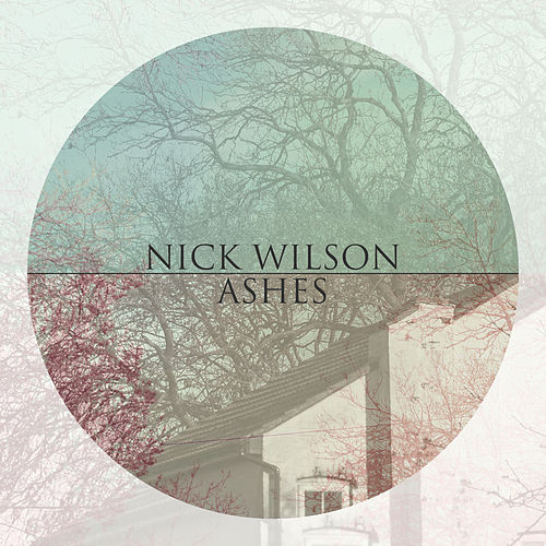 Ashes by Nick Wilson