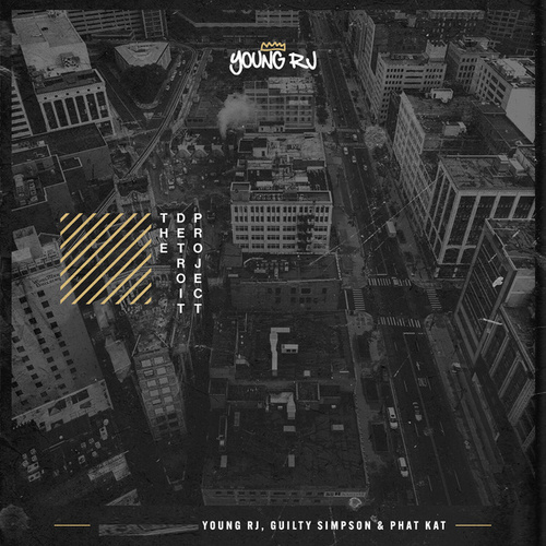 The Detroit Project by Various Artists