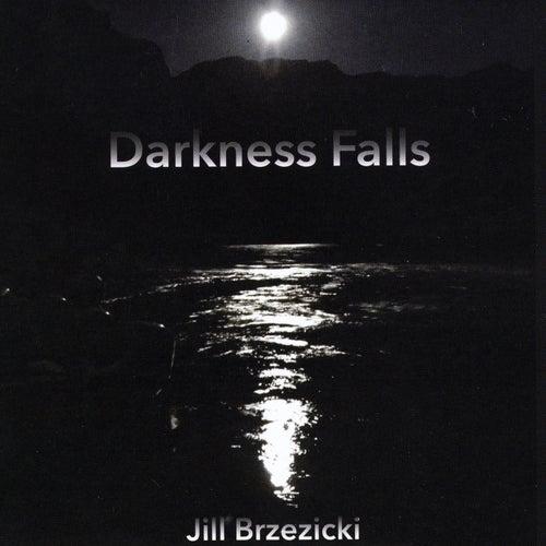 Darkness Falls by Jill Brzezicki