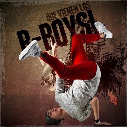 Que vienen los B-Boys! de Various Artists