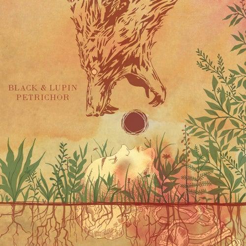 Nobody to Love (BK Remix) by Black : Napster