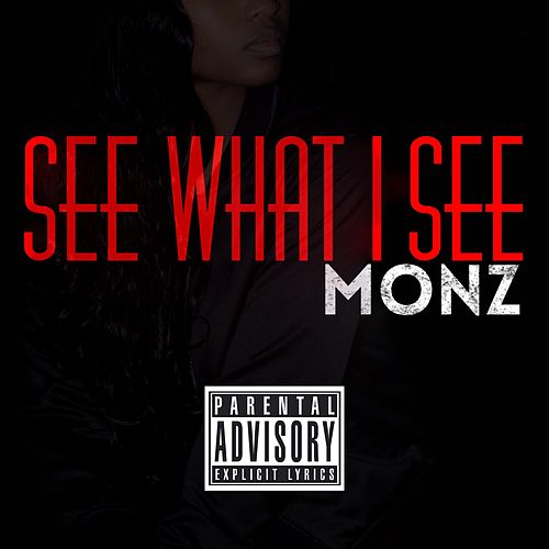 See What I See by Monz