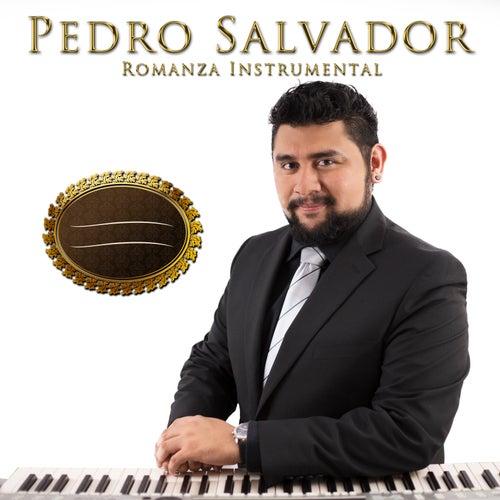 Romanza Instrumental by Pedro Salvador