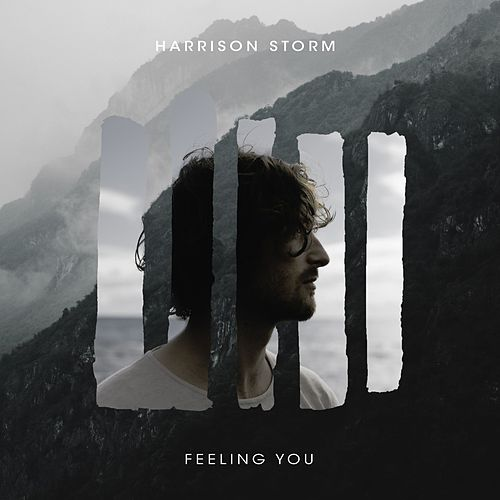 Feeling You by Harrison Storm