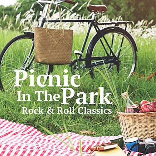 Picnic In The Park Rock & Roll Classics by Various Artists