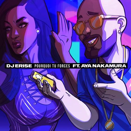 Pourquoi tu forces von DJ Erise