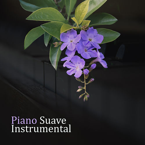 Piano Suave Instrumental by Relaxing Piano Music Consort