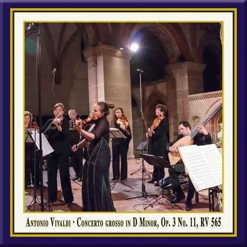 Vivaldi: Concerto grosso in D Minor, Op. 3, No. 11, RV 565 (Live) by Birgit Schnurpfeil