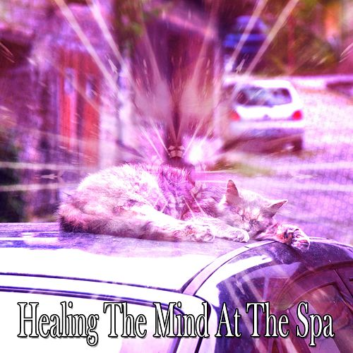 Healing The Mind At The Spa von Best Relaxing SPA Music