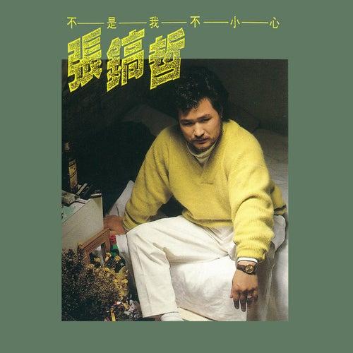 Bu Shi Wo Bu Xiao Xin de Chang Ho Chirl