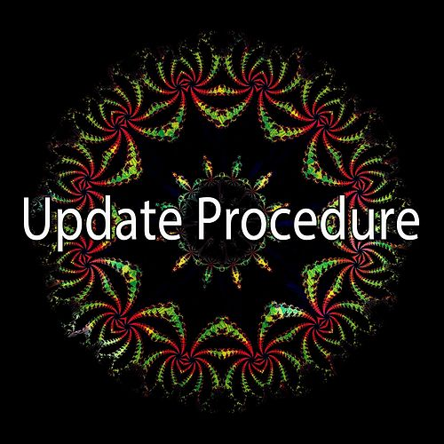 Update Procedure by CDM Project
