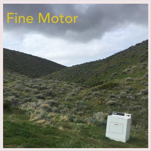 Fine Motor de Fine Motor