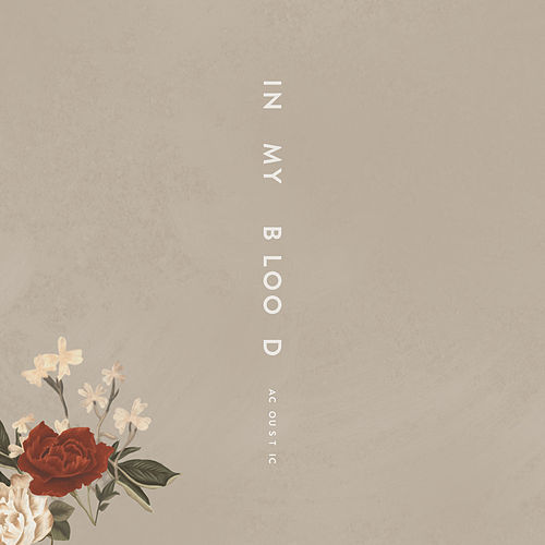 In My Blood (Acoustic) de Shawn Mendes