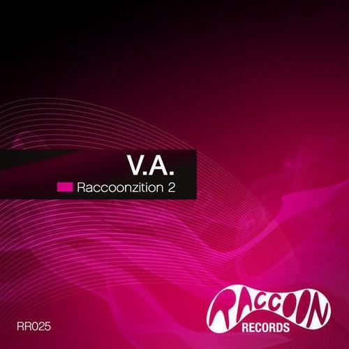 Raccoonzition 2 von Various Artists