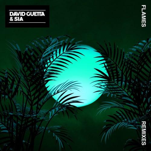 Flames (Remixes) de David Guetta