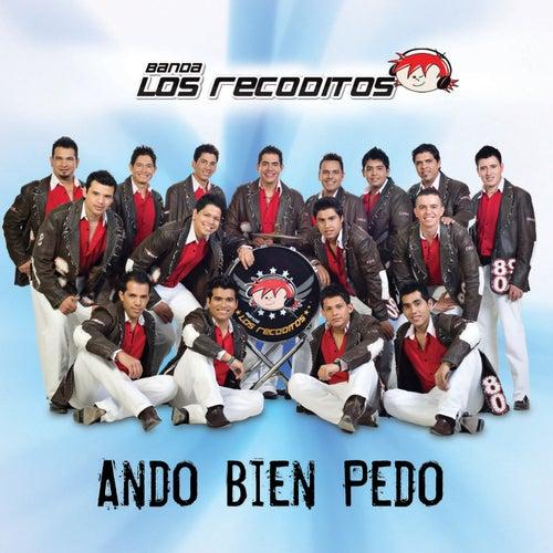 Ando Bien Pedo de Banda Los Recoditos