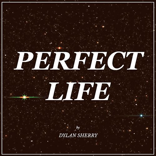 Perfect Life by Dylan Sherry