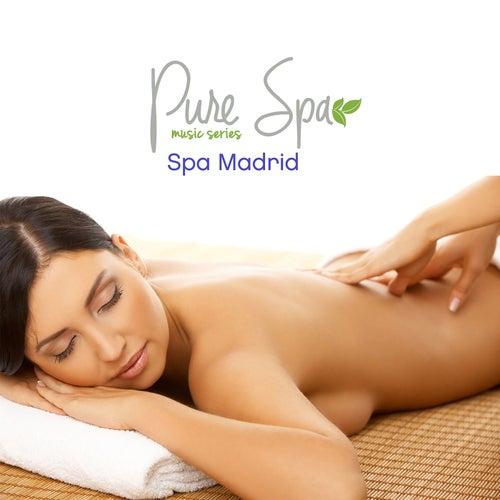 Pure Spa Madrid de Various Artists