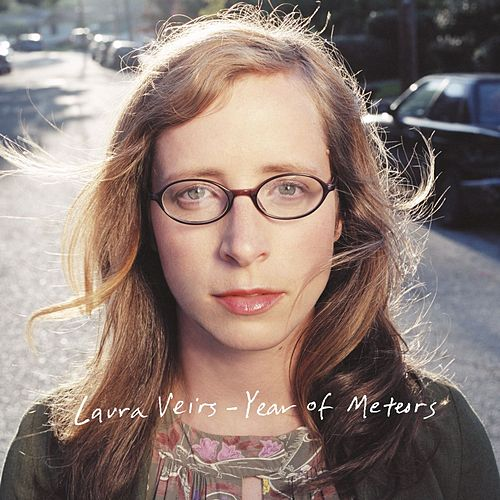 Year of Meteors by Laura Veirs